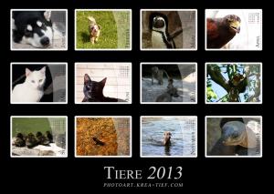 kalender_2013_klein