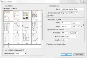 pdf_importieren
